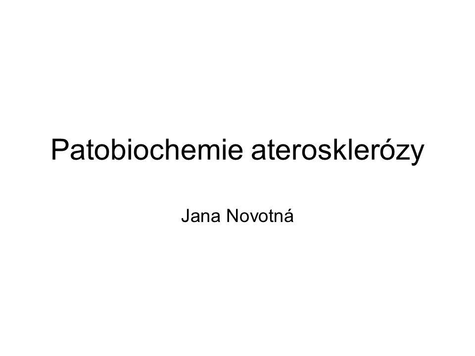 Patobiochemie aterosklerózy Jana Novotná