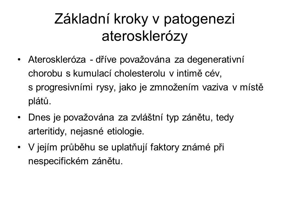 Základní kroky v patogenezi aterosklerózy Ateroskleróza - dříve považována za degenerativní chorobu s kumulací cholesterolu v intimě cév, s progresivn