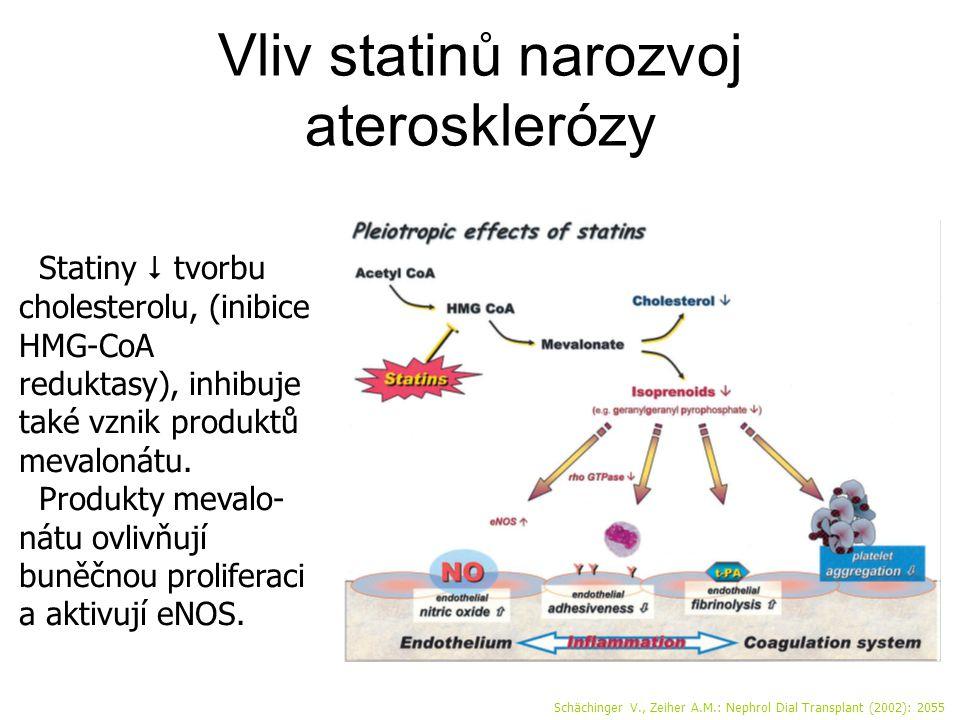 Vliv statinů narozvoj aterosklerózy Schächinger V., Zeiher A.M.: Nephrol Dial Transplant (2002): 2055 Statiny  tvorbu cholesterolu, (inibice HMG-CoA