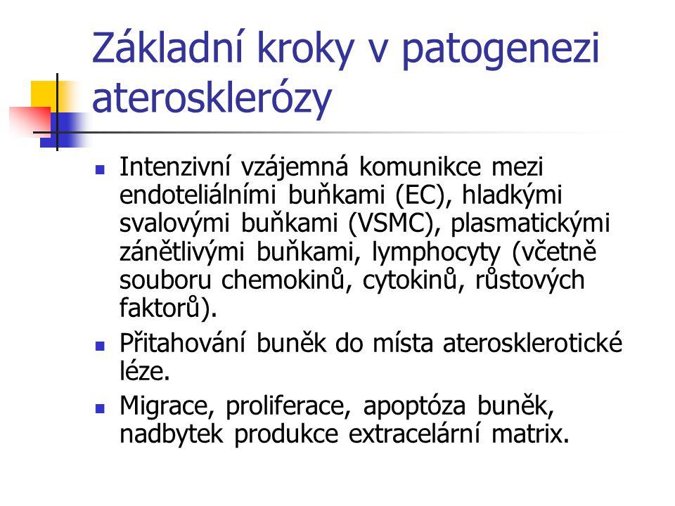 Základní kroky v patogenezi aterosklerózy Intenzivní vzájemná komunikce mezi endoteliálními buňkami (EC), hladkými svalovými buňkami (VSMC), plasmatic