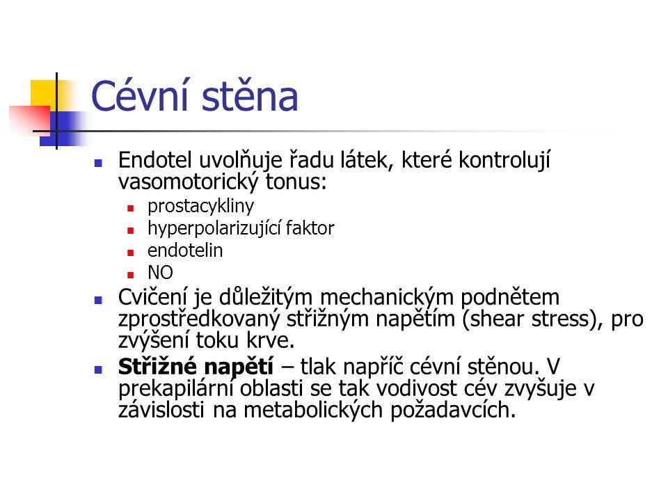 Cévní stěna Endotel uvolňuje řadu látek, které kontrolují vasomotorický tonus: prostacykliny hyperpolarizující faktor endotelin NO Cvičení je důležitý