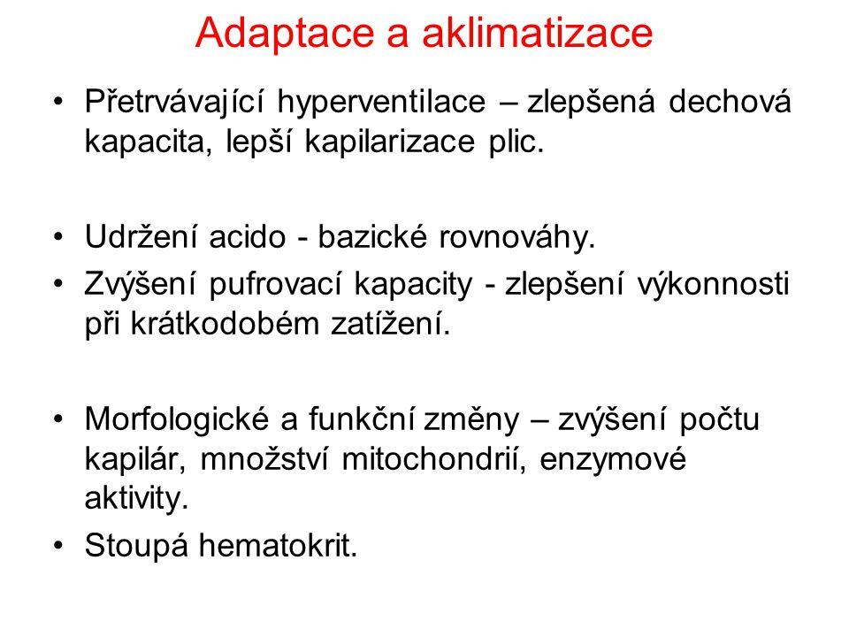 Adaptace a aklimatizace Přetrvávající hyperventilace – zlepšená dechová kapacita, lepší kapilarizace plic.