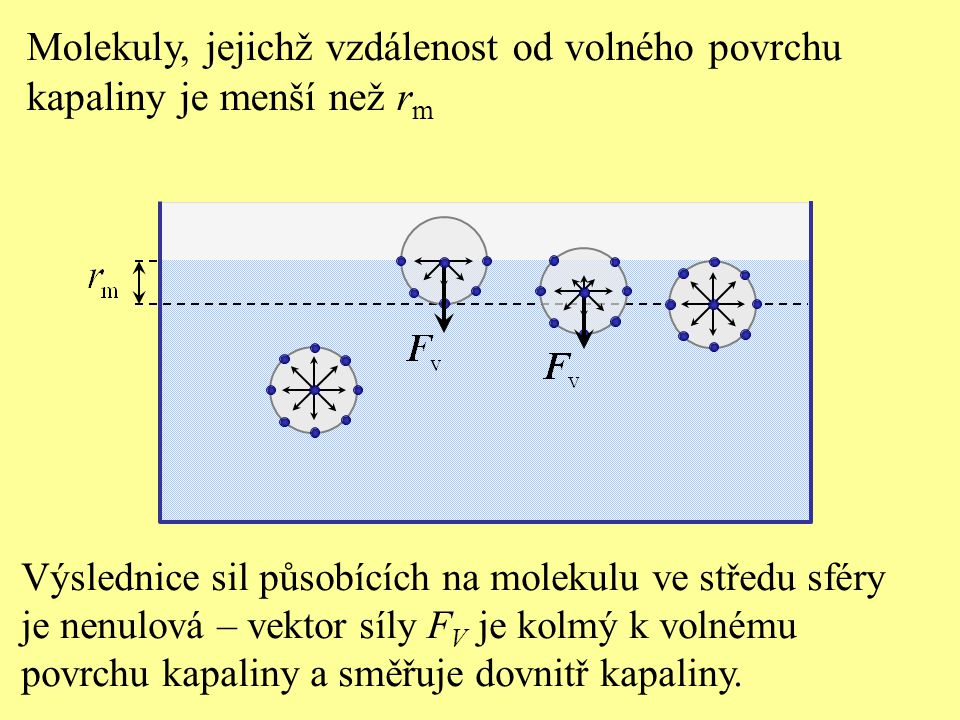 Molekuly, jejichž vzdálenost od volného povrchu kapaliny je menší než r m Výslednice sil působících na molekulu ve středu sféry je nenulová – vektor síly F V je kolmý k volnému povrchu kapaliny a směřuje dovnitř kapaliny.