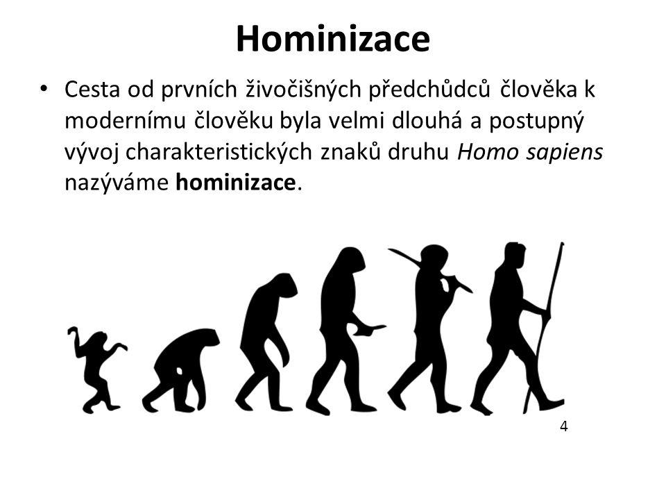 Hominizace Cesta od prvních živočišných předchůdců člověka k modernímu člověku byla velmi dlouhá a postupný vývoj charakteristických znaků druhu Homo