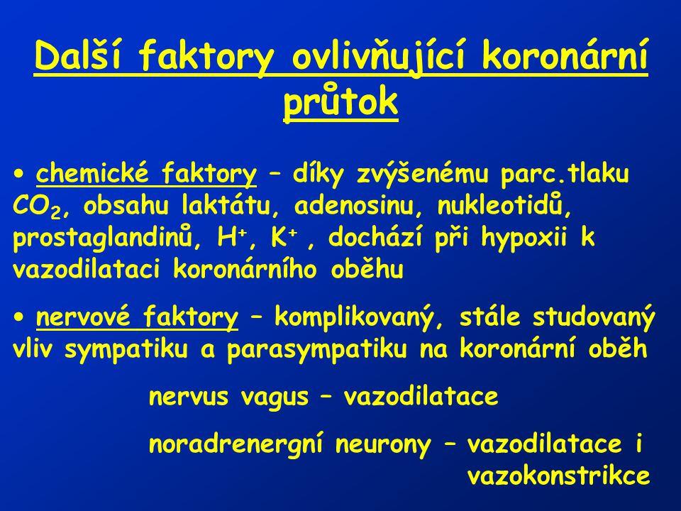 Další faktory ovlivňující koronární průtok chemické faktory – díky zvýšenému parc.tlaku CO 2, obsahu laktátu, adenosinu, nukleotidů, prostaglandinů, H