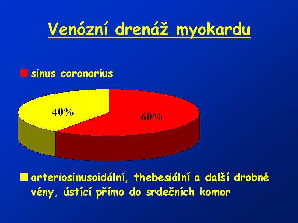 Koronární průtok = 250ml/min