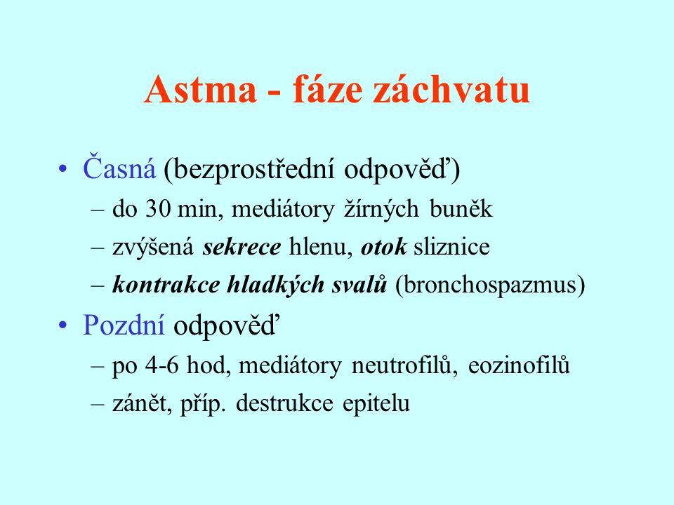 Astma - fáze záchvatu Časná (bezprostřední odpověď) –do 30 min, mediátory žírných buněk –zvýšená sekrece hlenu, otok sliznice –kontrakce hladkých svalů (bronchospazmus) Pozdní odpověď –po 4-6 hod, mediátory neutrofilů, eozinofilů –zánět, příp.