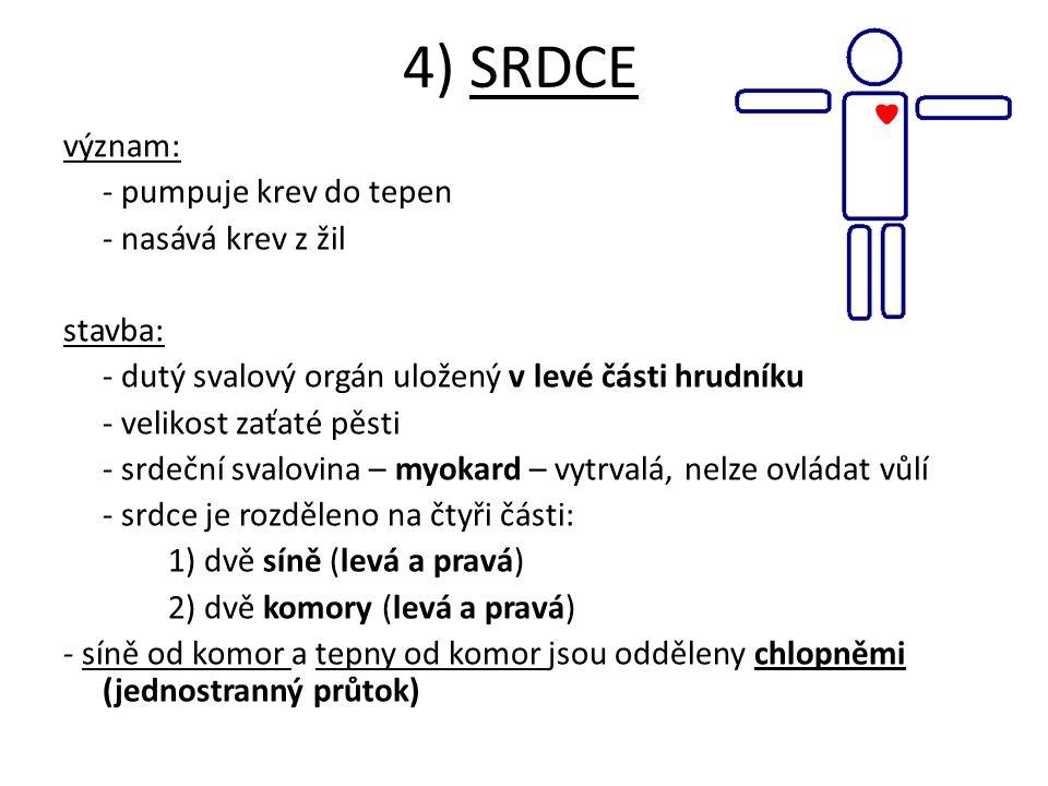 4) SRDCE význam: - pumpuje krev do tepen - nasává krev z žil stavba: - dutý svalový orgán uložený v levé části hrudníku - velikost zaťaté pěsti - srde