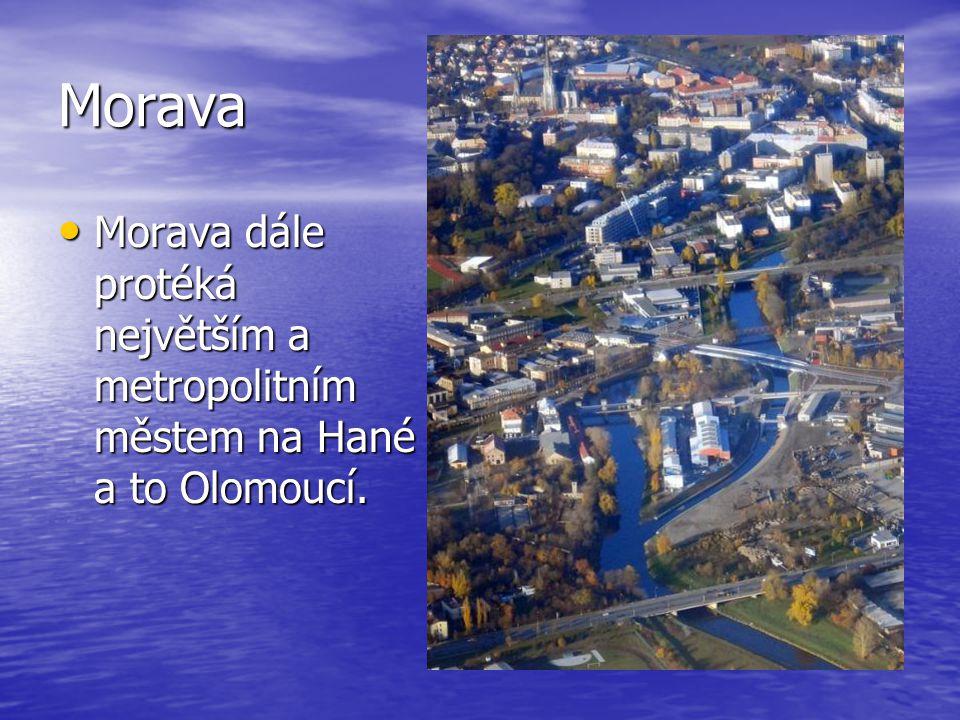 Morava Morava teče jižním směrem, kde až po soutok s Dunajem u Bratislavy-Děvína tvoří rakousko- slovenskou státní hranici.