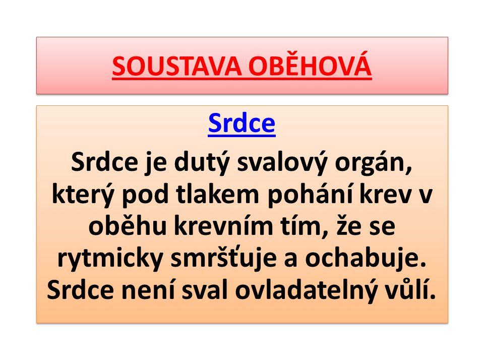 SOUSTAVA OBĚHOVÁ Srdce Srdce je dutý svalový orgán, který pod tlakem pohání krev v oběhu krevním tím, že se rytmicky smršťuje a ochabuje. Srdce není s