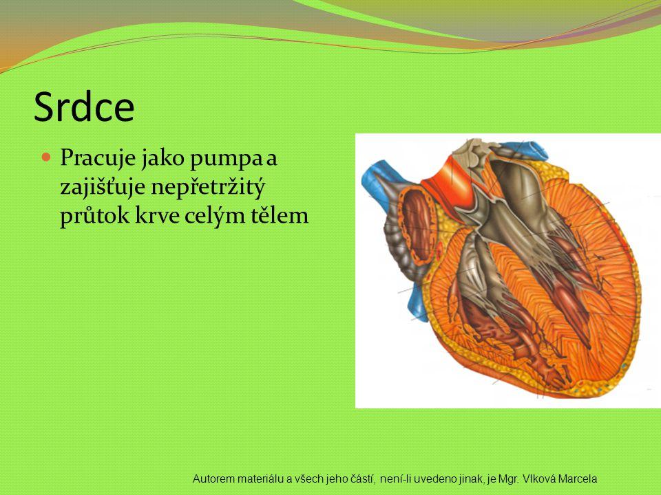 Srdce Pracuje jako pumpa a zajišťuje nepřetržitý průtok krve celým tělem Autorem materiálu a všech jeho částí, není-li uvedeno jinak, je Mgr. Vlková M
