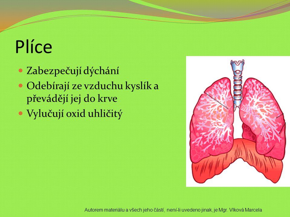 Plíce Zabezpečují dýchání Odebírají ze vzduchu kyslík a převádějí jej do krve Vylučují oxid uhličitý Autorem materiálu a všech jeho částí, není-li uve