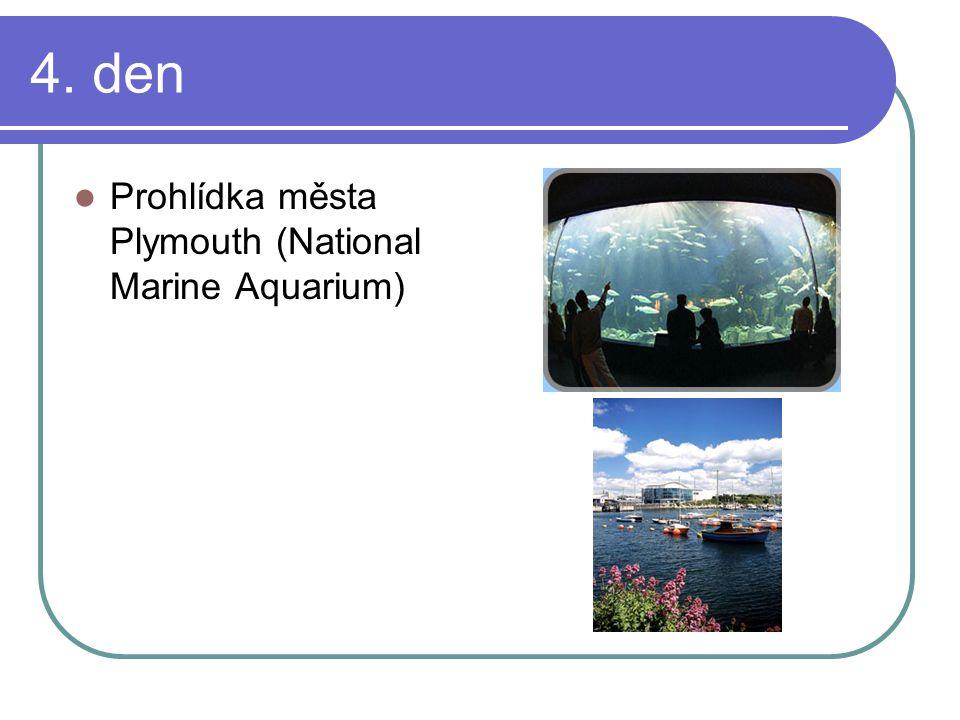 4. den Prohlídka města Plymouth (National Marine Aquarium)