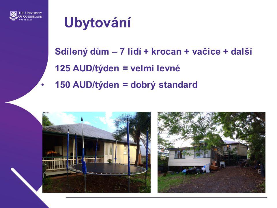 Ubytování Sdílený dům – 7 lidí + krocan + vačice + další 125 AUD/týden = velmi levné 150 AUD/týden = dobrý standard