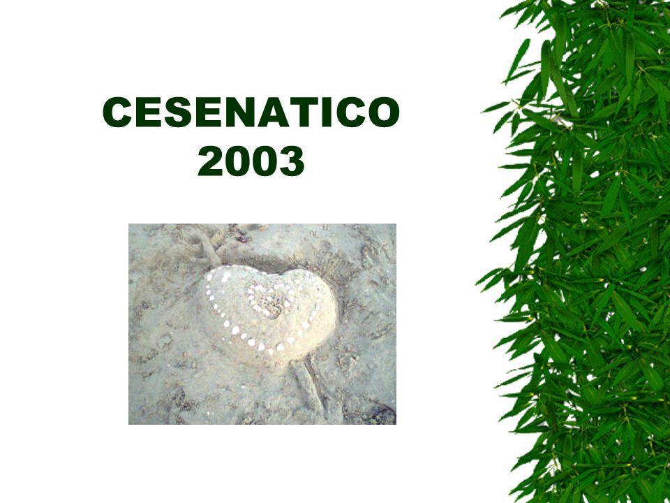 CESENATICO 2003
