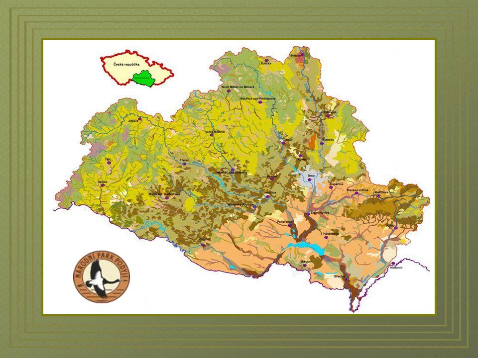 Řeka Dyje pramení na Jihlavsku na Českomoravské Vysočině. Vlastní Dyje vzniká na soutoku s rakouskou Dyjí / Thaya / pod městem Raabs an del Thaya v Ra