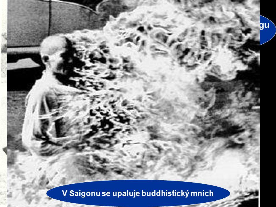 Jiří Řehák Gymnázium Teplice 2006 4 VÁLKA VE VIETNAMU VIETKONG Vietkong - partyzáni v jižním Vietnamu Cílem je svrhnout Diemův režim –Američané vsadil
