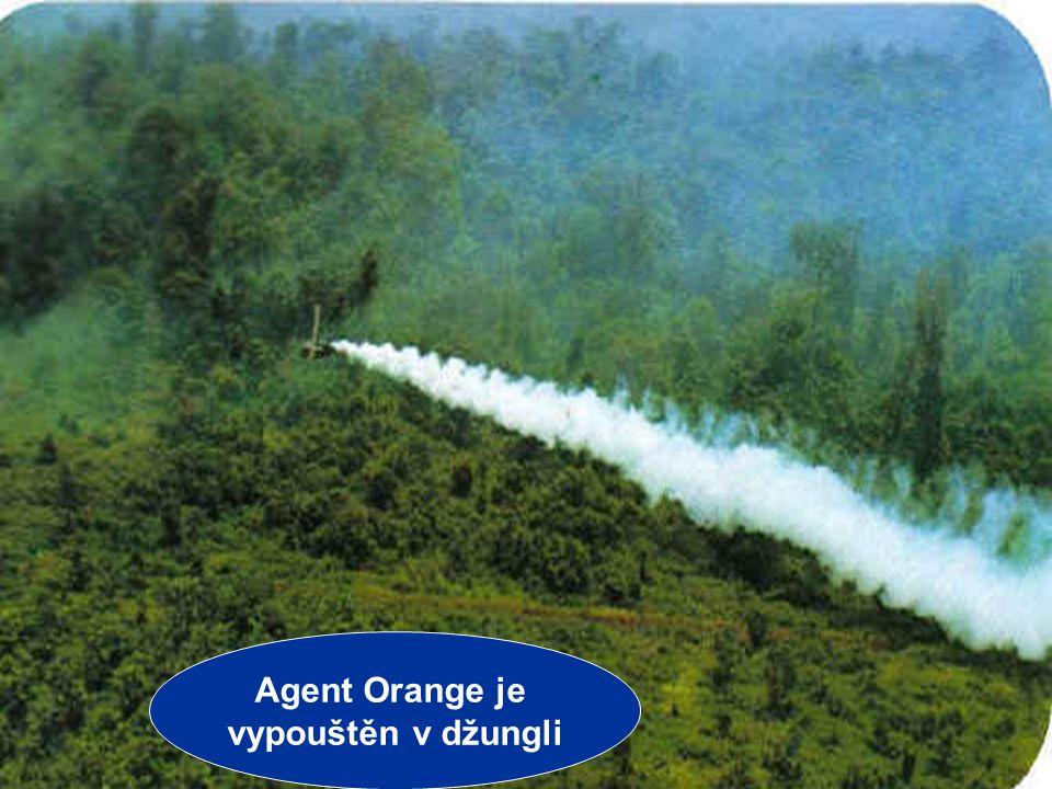 Jiří Řehák Gymnázium Teplice 2006 9 VÁLKA VE VIETNAMU CHEMICKÉ ZBRANĚ Vietkong měl výhodu – operoval v neprostupné džungli USA nasadily napalm – zápal