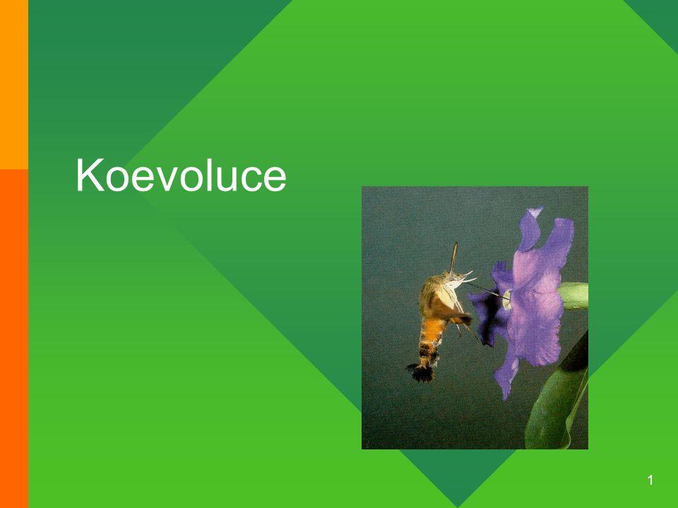 2 Obsah Význam koevolučních procesů v evoluci Princip červené královny Vnitrodruhové a mezidruhové závody ve zbrojení Symbióza Princip rozšířeného fenotypu Mimeze a výstražné zbarvení