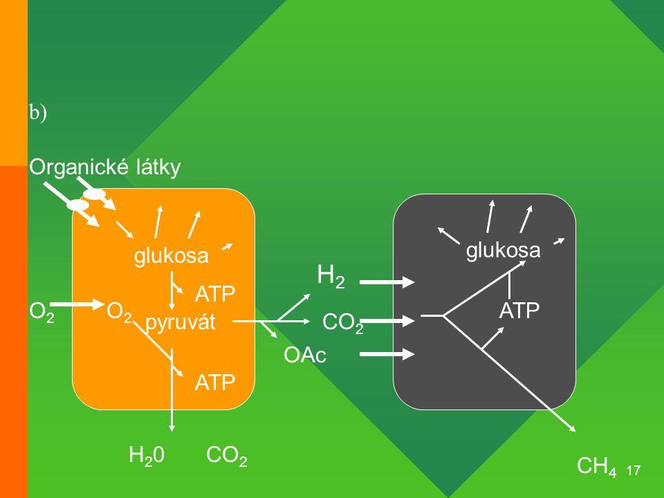 17 Organické látky glukosa pyruvát O2O2 O2O2 ATP CH 4 CO 2 ATP H2H2 CO 2 glukosa ATP H20H20 OAc b)