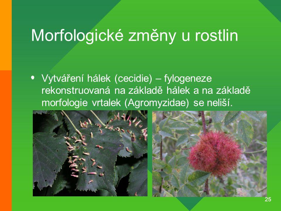 25 Morfologické změny u rostlin Vytváření hálek (cecidie) – fylogeneze rekonstruovaná na základě hálek a na základě morfologie vrtalek (Agromyzidae) s