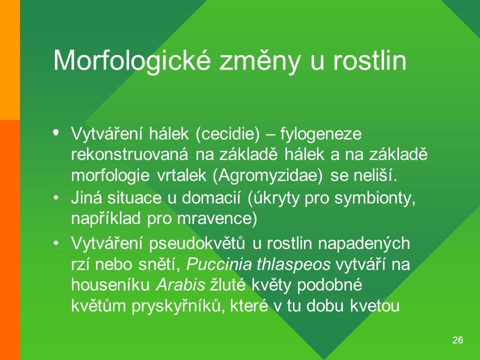 26 Morfologické změny u rostlin Vytváření hálek (cecidie) – fylogeneze rekonstruovaná na základě hálek a na základě morfologie vrtalek (Agromyzidae) s