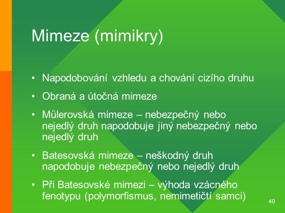 40 Mimeze (mimikry) Napodobování vzhledu a chování cizího druhu Obraná a útočná mimeze Mülerovská mimeze – nebezpečný nebo nejedlý druh napodobuje jin