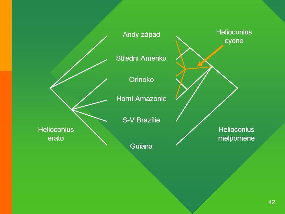 42 Střední Amerika Andy západ Orinoko Horní Amazonie S-V Brazílie Guiana Helioconius melpomene Helioconius erato Helioconius cydno