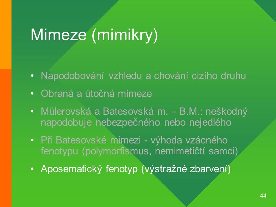 44 Mimeze (mimikry) Napodobování vzhledu a chování cizího druhu Obraná a útočná mimeze Mülerovská a Batesovská m. – B.M.: neškodný napodobuje nebezpeč