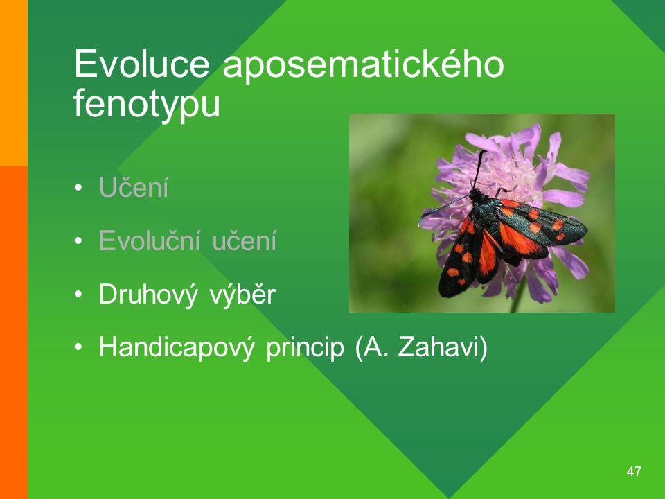 47 Evoluce aposematického fenotypu Učení Evoluční učení Druhový výběr Handicapový princip (A. Zahavi)