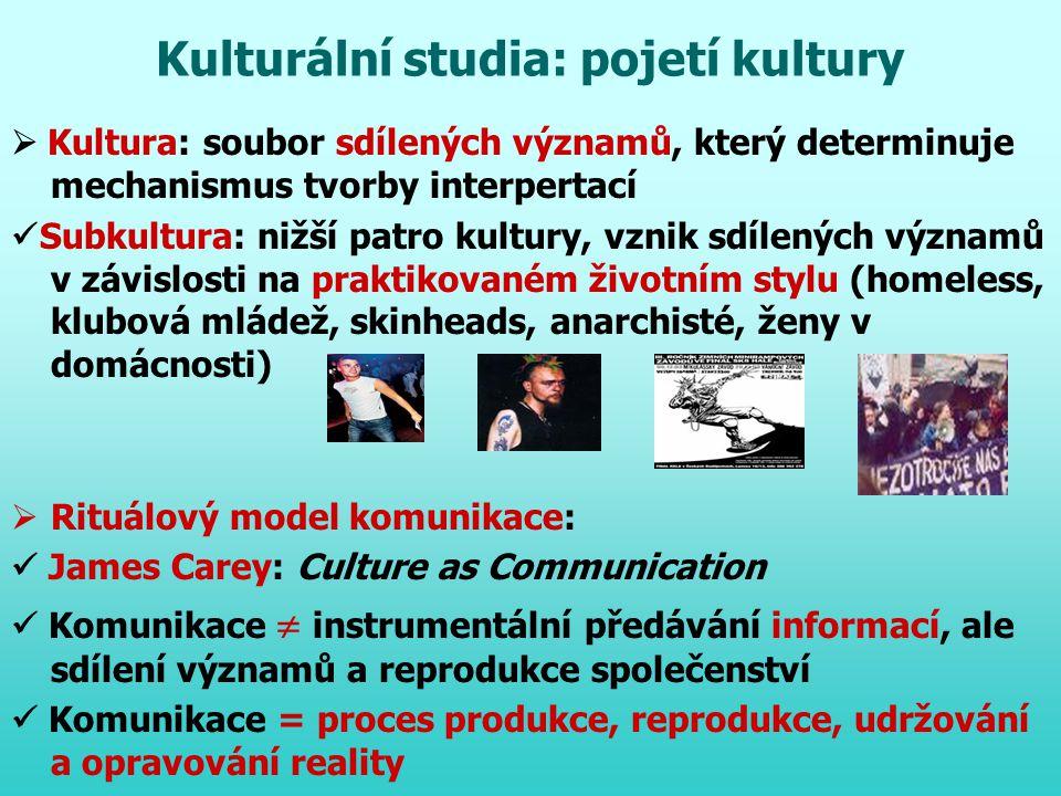 Kulturální studia: pojetí kultury  Kultura: soubor sdílených významů, který determinuje mechanismus tvorby interpertací Subkultura: nižší patro kultu
