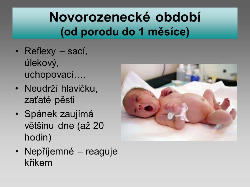 Novorozenecké období (od porodu do 1 měsíce) Reflexy – sací, úlekový, uchopovací….