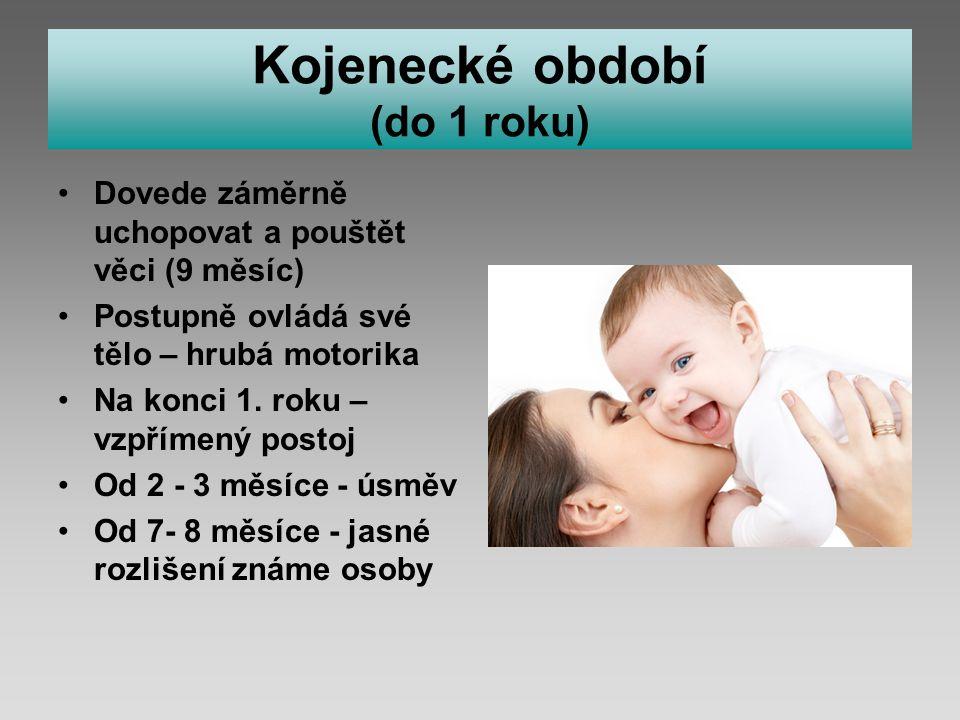 Kojenecké období (do 1 roku) Dovede záměrně uchopovat a pouštět věci (9 měsíc) Postupně ovládá své tělo – hrubá motorika Na konci 1.