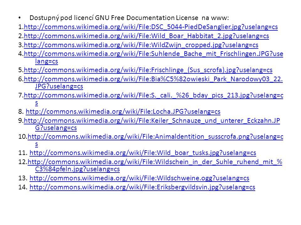 Dostupný pod licencí GNU Free Documentation License na www: 1.http://commons.wikimedia.org/wiki/File:DSC_5044-PiedDeSanglier.jpg?uselang=cshttp://commons.wikimedia.org/wiki/File:DSC_5044-PiedDeSanglier.jpg?uselang=cs 2.http://commons.wikimedia.org/wiki/File:Wild_Boar_Habbitat_2.jpg?uselang=cshttp://commons.wikimedia.org/wiki/File:Wild_Boar_Habbitat_2.jpg?uselang=cs 3.http://commons.wikimedia.org/wiki/File:WildZwijn_cropped.jpg?uselang=cshttp://commons.wikimedia.org/wiki/File:WildZwijn_cropped.jpg?uselang=cs 4.http://commons.wikimedia.org/wiki/File:Suhlende_Bache_mit_Frischlingen.JPG?use lang=cshttp://commons.wikimedia.org/wiki/File:Suhlende_Bache_mit_Frischlingen.JPG?use lang=cs 5.http://commons.wikimedia.org/wiki/File:Frischlinge_(Sus_scrofa).jpg?uselang=cshttp://commons.wikimedia.org/wiki/File:Frischlinge_(Sus_scrofa).jpg?uselang=cs 6.http://commons.wikimedia.org/wiki/File:Bia%C5%82owieski_Park_Narodowy03_22.