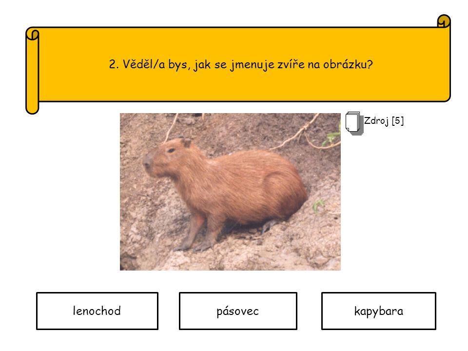2. Věděl/a bys, jak se jmenuje zvíře na obrázku lenochodpásoveckapybara Zdroj [ 5 ]