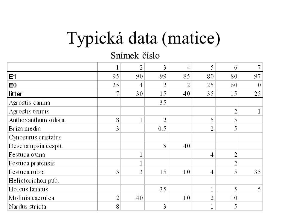 Typická data (matice) Snímek číslo