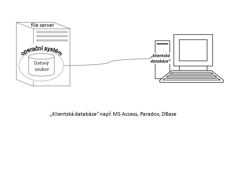 """Datový soubor """"klientská databáze"""" file server """"Klientská databáze"""" např. MS Access, Paradox, DBase"""