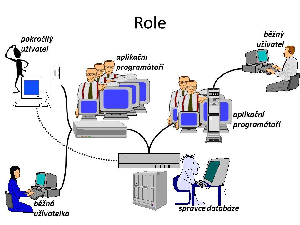 správce databáze aplikační programátoři běžný uživatel běžná uživatelka pokročilý uživatel Role