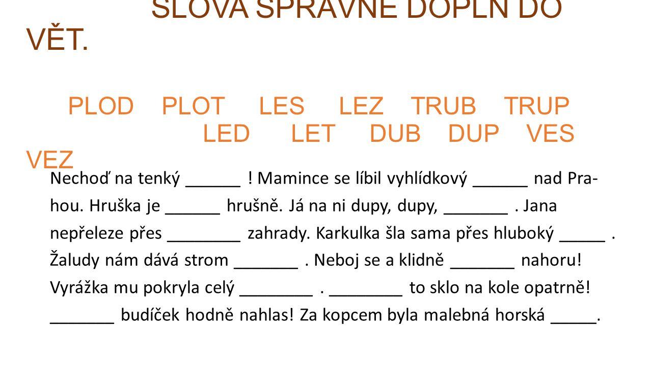 SLOVA SPRÁVNĚ DOPLŇ DO VĚT. PLOD PLOT LES LEZ TRUB TRUP LED LET DUB DUP VES VEZ Nechoď na tenký ______ ! Mamince se líbil vyhlídkový ______ nad Pra- h
