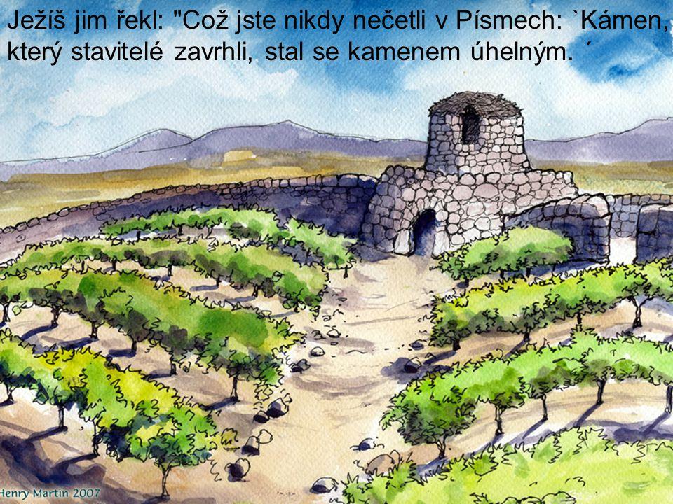 Ježíš jim řekl: Což jste nikdy nečetli v Písmech: `Kámen, který stavitelé zavrhli, stal se kamenem úhelným.