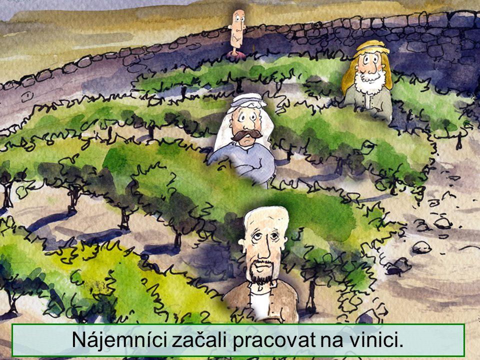 Když se přiblížil čas vinobraní, poslal své služebníky k vinařům, aby převzali jeho díl úrody.