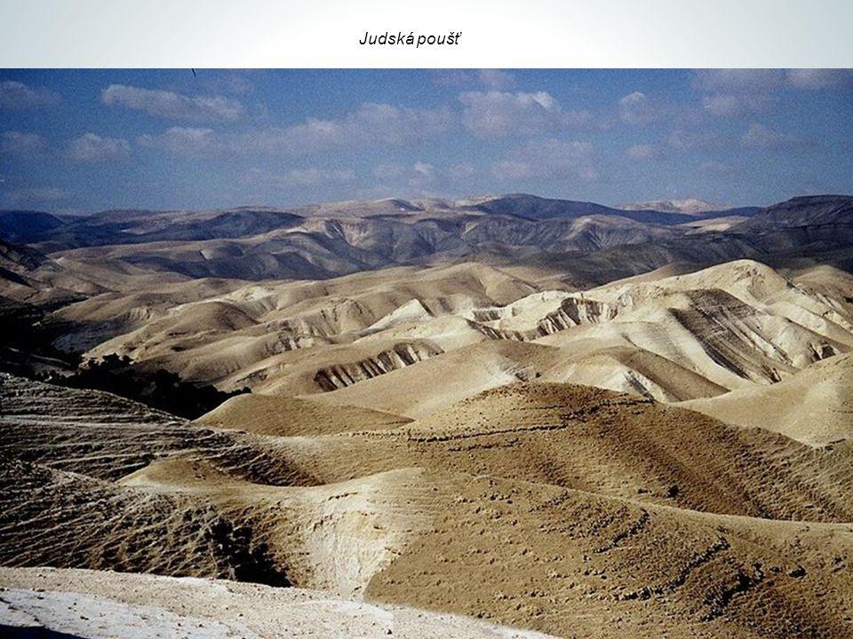 Hory (symbol síly a Boží přítomnosti) -Gerizim a Hebal (Izrael) -Sem přivedl Jozue izraelský lid, aby obnovil smlouvu s Bohem -Olivová hora (východně od Jeruzaléma) -Zde učil Ježíš své učedníky a odcházel sem do samoty -Sinaj -Bůh se zjevil Mojžíšovi v hořícím keři a lid Izraele vstoupil do smlouvy s Bohem -Mojžíš obdržel od Boha destero