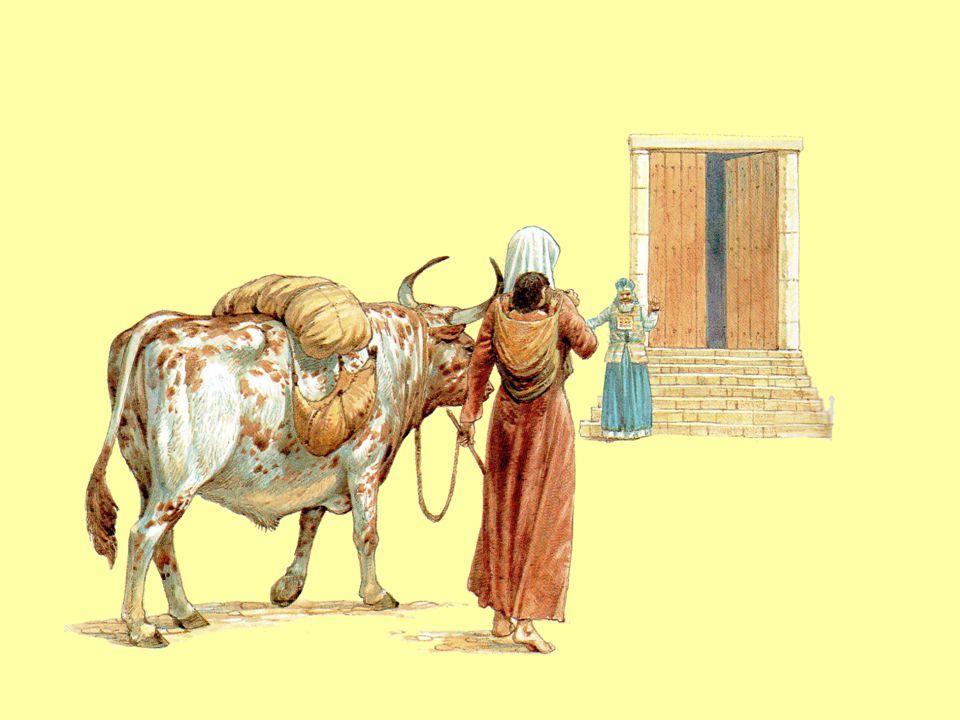 Z truhly moudrosti krále Šalamouna 1.Kdo byl Samuel.