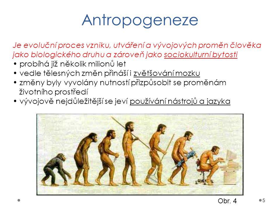 Antropogeneze 5 Je evoluční proces vzniku, utváření a vývojových proměn člověka jako biologického druhu a zároveň jako sociokulturní bytosti probíhá j