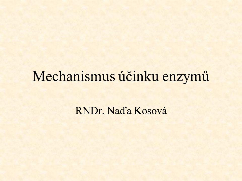 Mechanismus účinku enzymů RNDr. Naďa Kosová