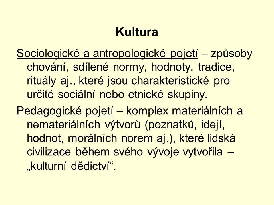 Kultura Sociologické a antropologické pojetí – způsoby chování, sdílené normy, hodnoty, tradice, rituály aj., které jsou charakteristické pro určité sociální nebo etnické skupiny.
