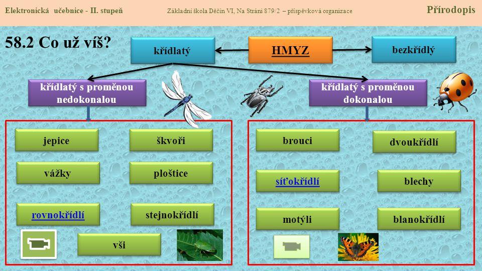 58.3 Jaké si řekneme nové termíny a názvy.Elektronická učebnice - II.