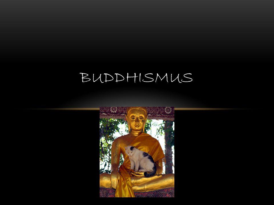 PŘEHLED ZÁKLADNÍCH ÚDAJŮ název od Buddha - v sanskrtu Probuzený, buddhisté mluví o Buddha dharma (dharma – zákon, to, co věci drží pohromadě) společné kořeny s dnešním hinduismem, převzetí některých základních myšlenek, sansára – plynutí života a životů v linii karma – následky, praxe vedoucí k osvobození