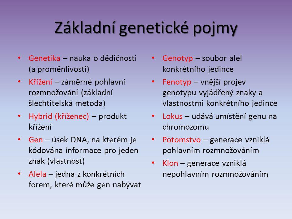 Základní genetické pojmy Genetika – nauka o dědičnosti (a proměnlivosti) Křížení – záměrné pohlavní rozmnožování (základní šlechtitelská metoda) Hybrid (kříženec) – produkt křížení Gen – úsek DNA, na kterém je kódována informace pro jeden znak (vlastnost) Alela – jedna z konkrétních forem, které může gen nabývat Genotyp – soubor alel konkrétního jedince Fenotyp – vnější projev genotypu vyjádřený znaky a vlastnostmi konkrétního jedince Lokus – udává umístění genu na chromozomu Potomstvo – generace vzniklá pohlavním rozmnožováním Klon – generace vzniklá nepohlavním rozmnožováním