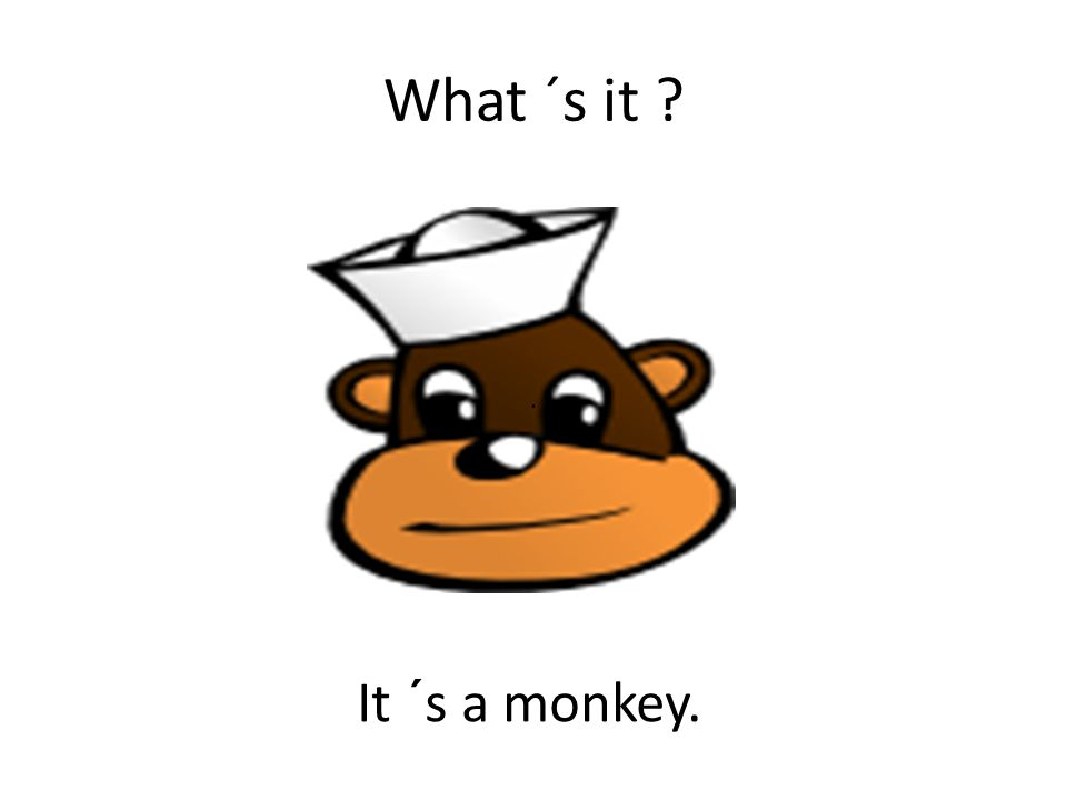 What ´s it ? It ´s a monkey..